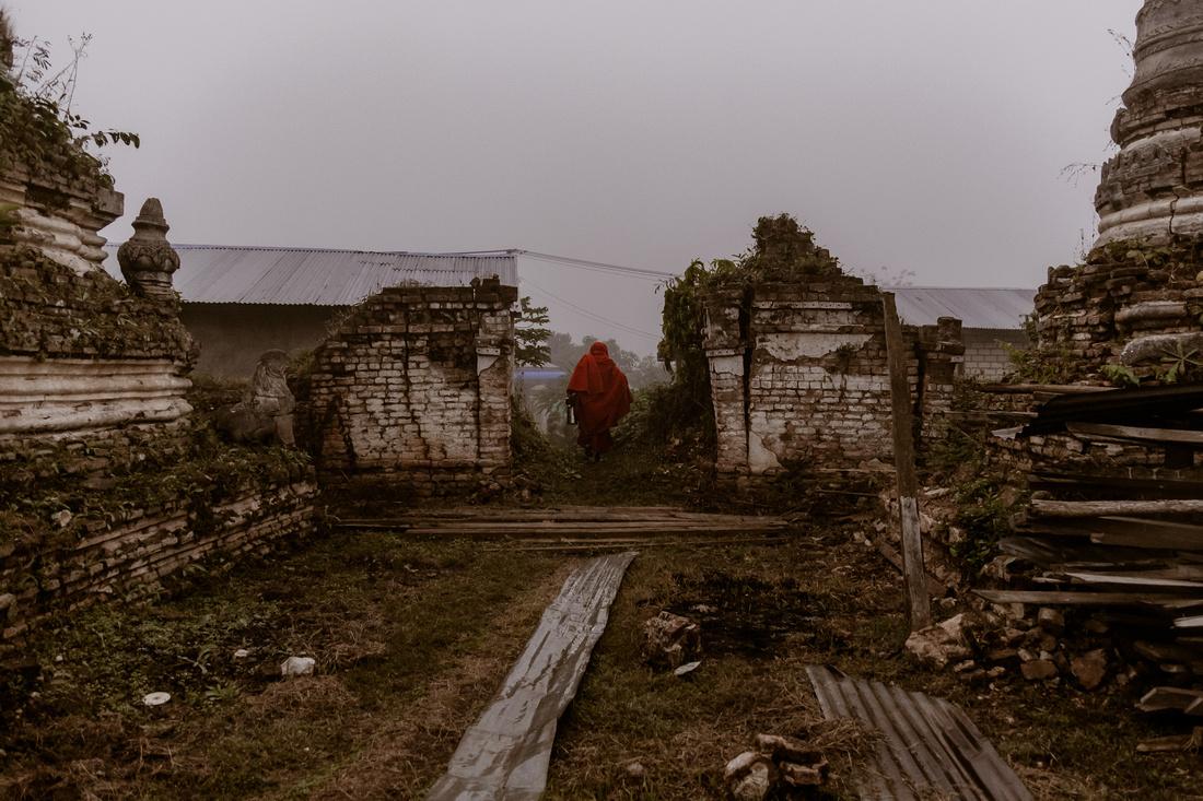 Misty Monk